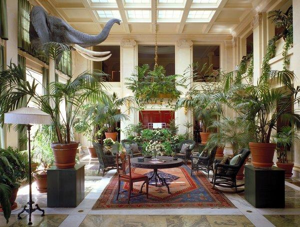 Op vakantie? 6 tips om jouw planten te laten overleven
