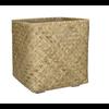 Bohemian Bamboo 70 cm - XXL