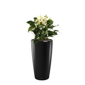Fleur.nl -Lechuza Anthurium Wit in watergevende pot Rondo