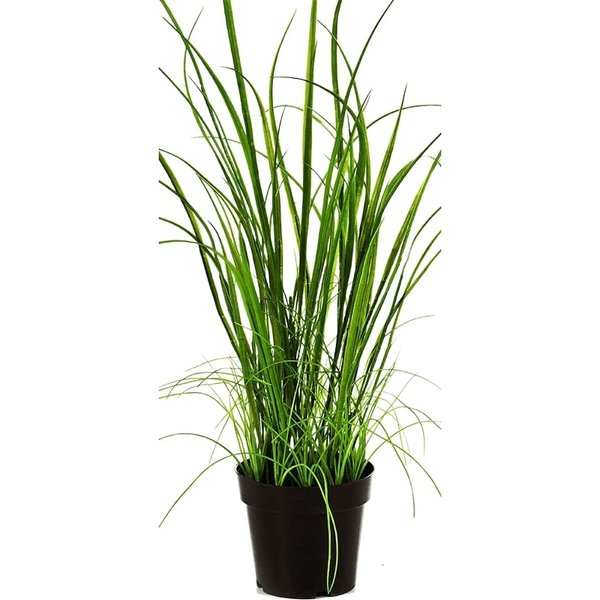 Wild Grass - kunstplant