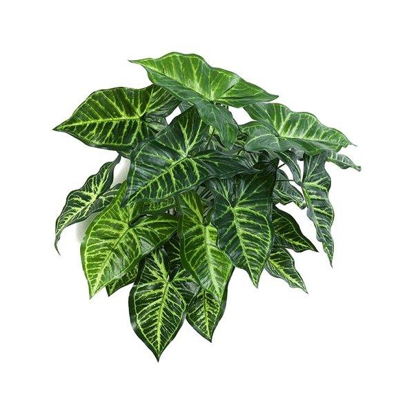 Philodendron - kunstplant