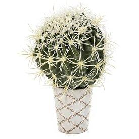Fleur.nl - Golden Barrel Cactus - kunstplant