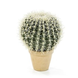 Fleur.nl - Golden Barrel Cactus XL - kunstplant