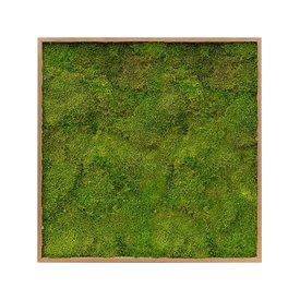 Fleur.nl - Platmos Bamboe Schilderij Vierkant