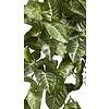 Nepthytis - kunstplant