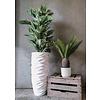Cycas - kunstplant