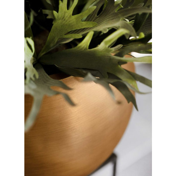 Capi Capi Nature Retro Vase Bowl Gold Ø 62