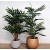 Rhapis Palm - kunstplant