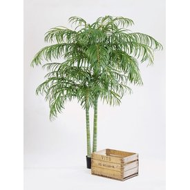 Fleur.nl - Areca Palm XXL - kunstplant