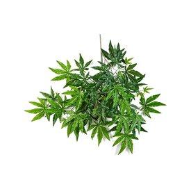 Fleur.nl - Japanse Maple Spray - kunstplant