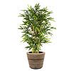 Bamboo Kunstplant in Pot Rattan