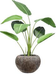 Kunstplanten in pot