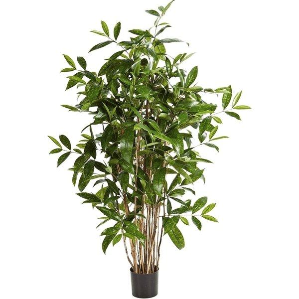 Dracaena Surculosa Tree Small - kunstplant