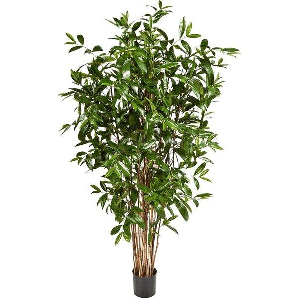 Dracaena Surculosa Tree Large- kunstplant