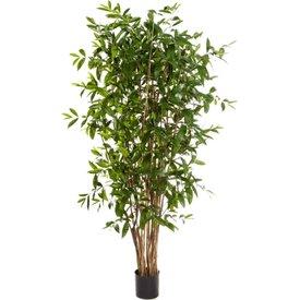 Fleur.nl - Dracaena Surculosa Tree Large - kunstplant