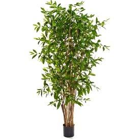 Fleur.nl - Dracaena Surculosa Tree XL - kunstplant
