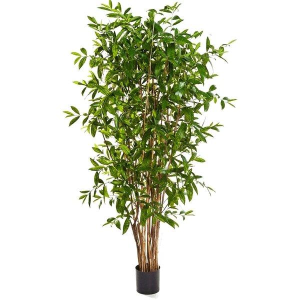 Dracaena Surculosa Tree XL - kunstplant