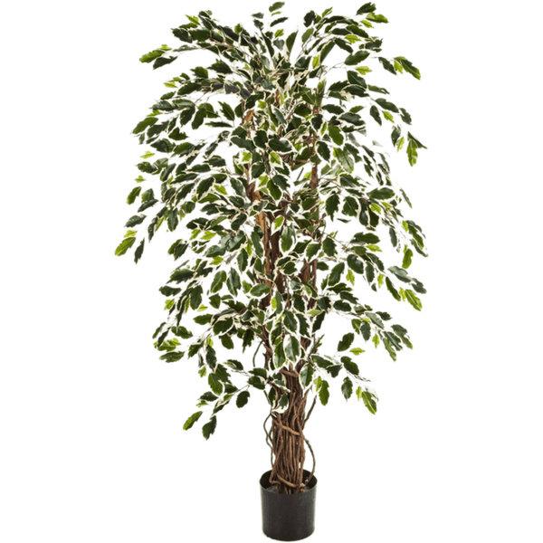 Ficus Liana variegata Small - kunstplant