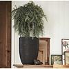 Nature Vase Elegant Low Rib Medium Ø 36