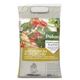 Fleur.nl -Pokon Anthurium potgrond voeding