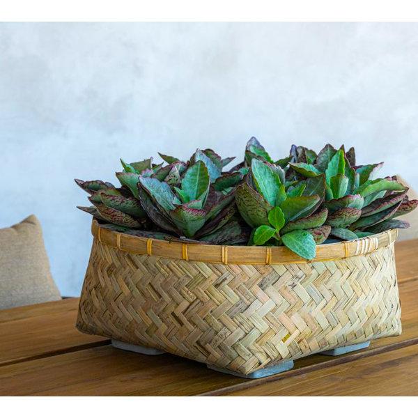 Pottery Pots Bohemian Bamboo Roll 48 cm