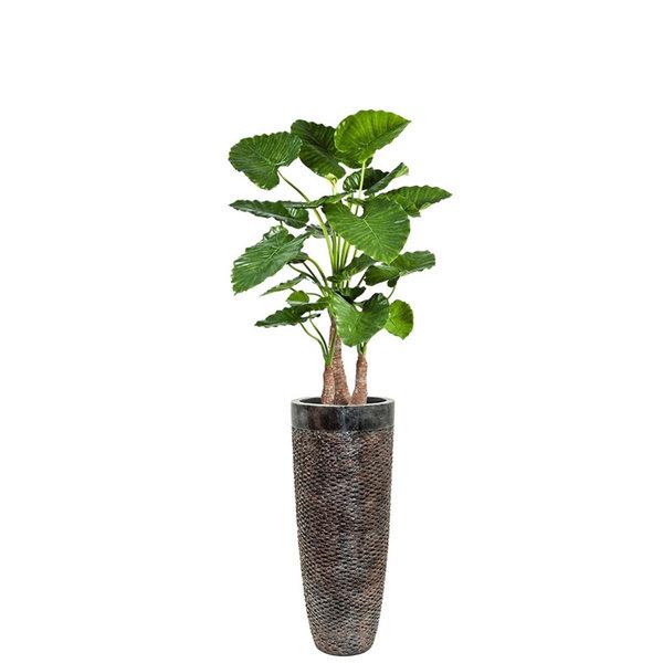 Alocasia Calidora (kunstplant) in  Partner Layer Bronze