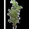 Kentia Palm XXL - kunstplant