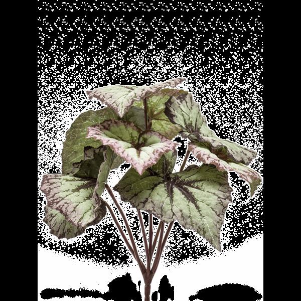 Begonia  - kunstplant