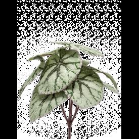 Fleur.nl - Begonia  - kunstplant