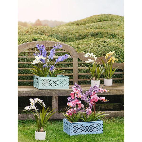 Vanda Pink - kunstplant