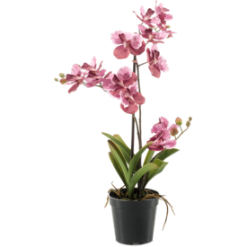 Fleur.nl - Vanda Pink - kunstplant