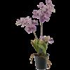 Vanda Mauve - kunstplant