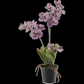 Fleur.nl - Vanda Mauve  - kunstplant