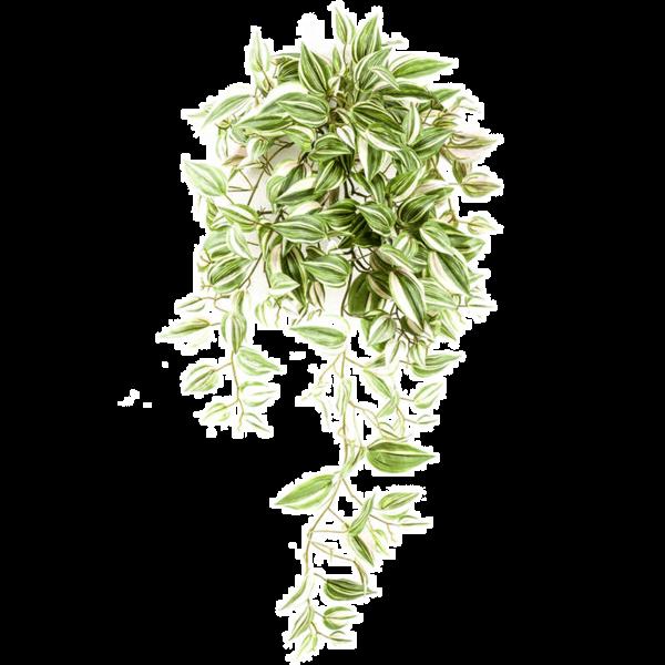 Tradescantia bush - kunstplant
