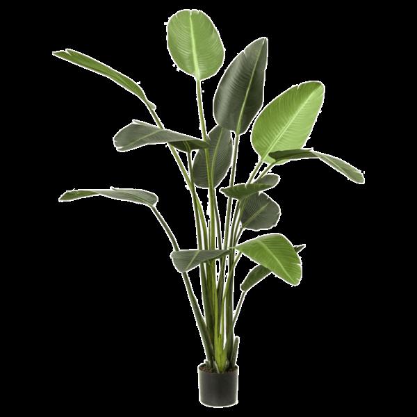 Strelitzia XL - kunstplant