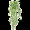 Springeri - kunstplant