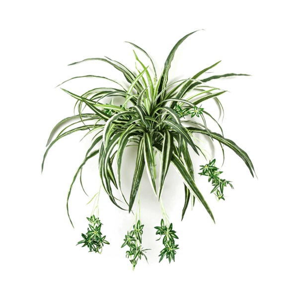 Spider - kunstplant