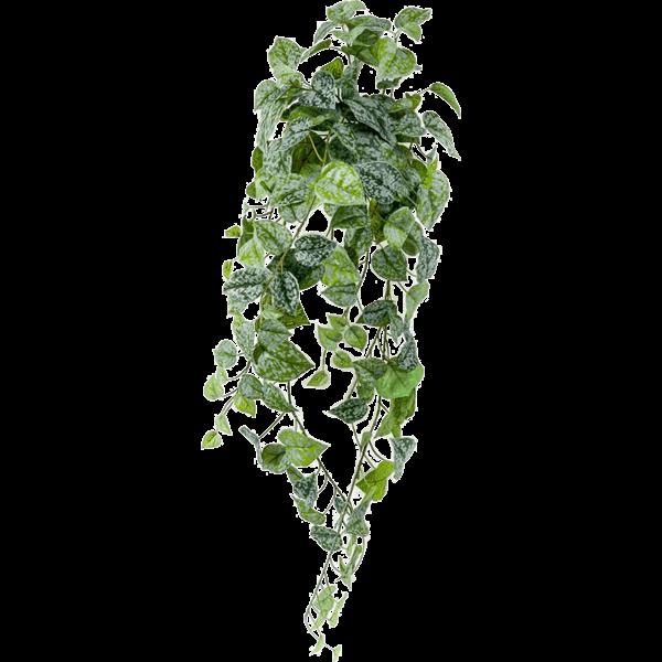 Scindapsus Pictus - kunstplant