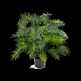 Fleur.nl - Philodendron Xanadu Bush - kunstplant