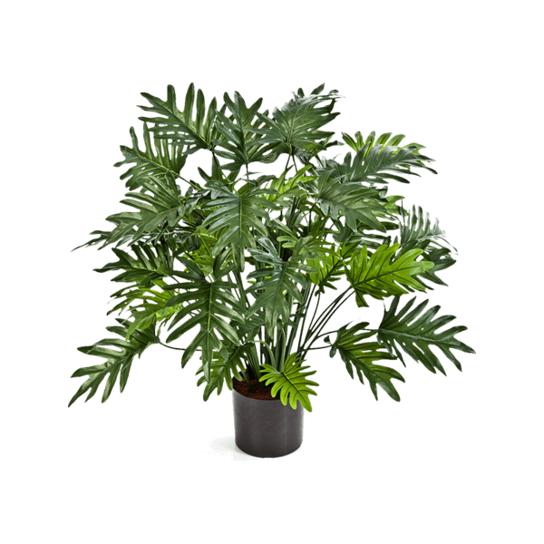 Philodendron Xanadu Bush - kunstplant