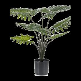 Fleur.nl - Philodendron Xanadu - kunstplant
