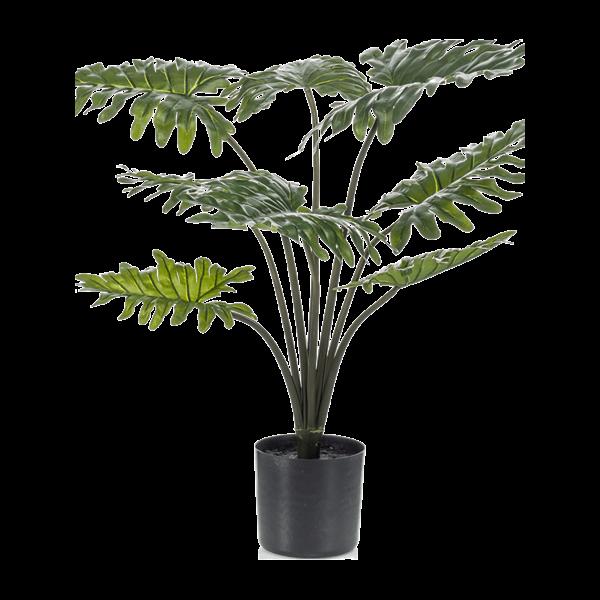Philodendron Xanadu - kunstplant