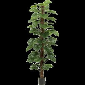 Fleur.nl - Monstera Zuil XL - kunstplant