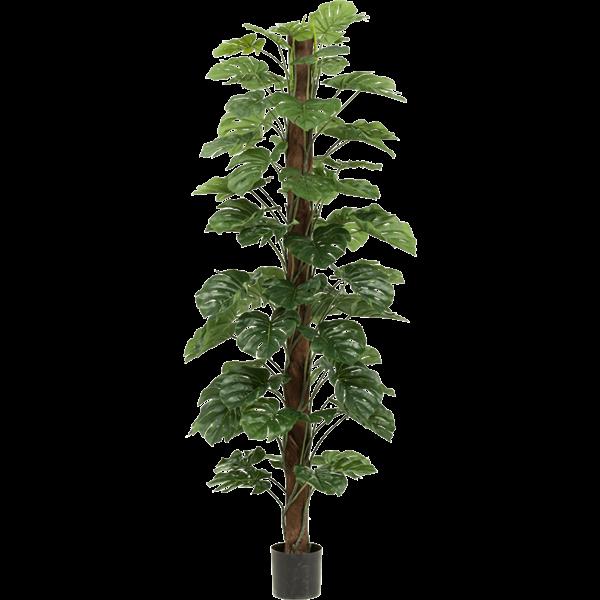Monstera Zuil XL - kunstplant
