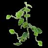 Monstera Garland - kunstplant