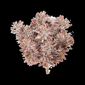 Fleur.nl - Miller Bush - kunstplant