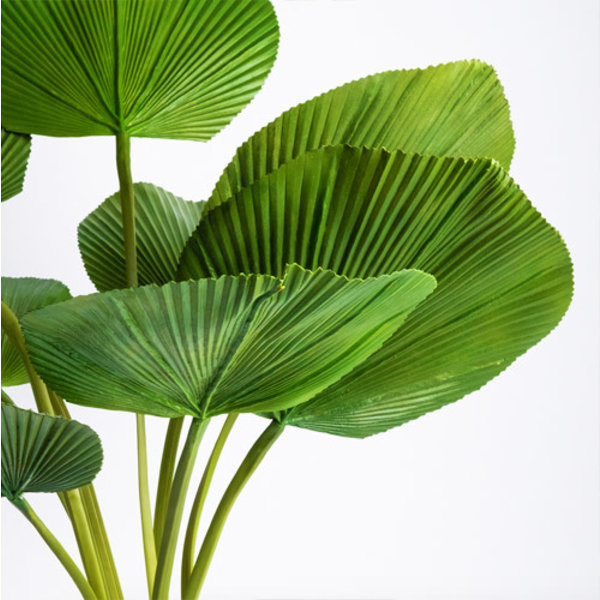 Licuala palm - kunstplant