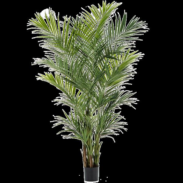 Kentia Palm Bush XL - kunstplant