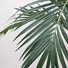 Kentia Palm Bush- kunstplant