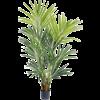 Kentia palm - kunstplant